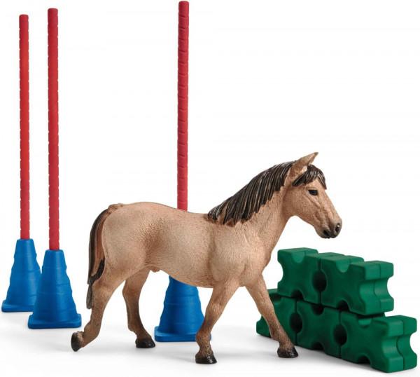 Pony Slalom
