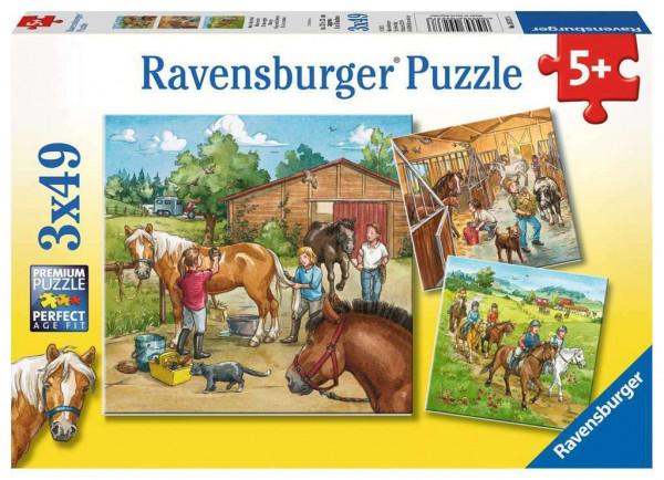Mein Reiterhof, puzzle 3 x 49 Teile