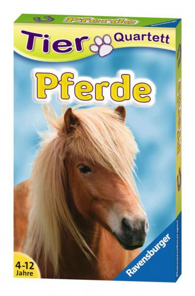 Pferde. Tierquartett