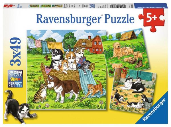 Süße Katzen und Hunde, Puzzle 3 x 49 Teile