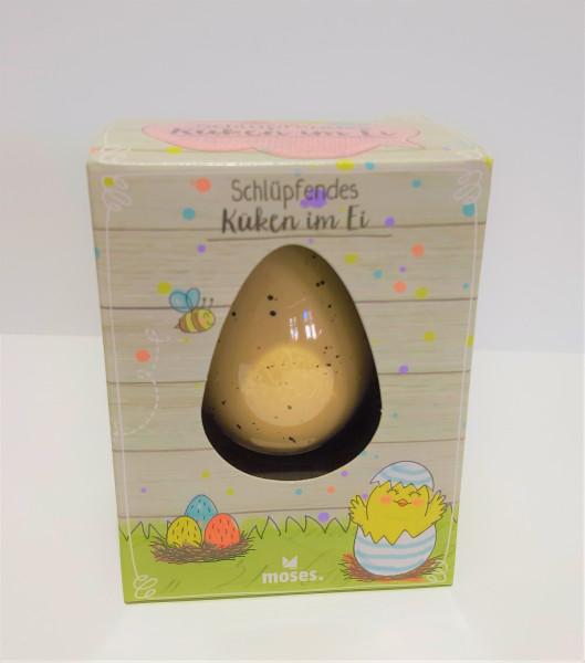 Schlüpfendes Küken im Ei