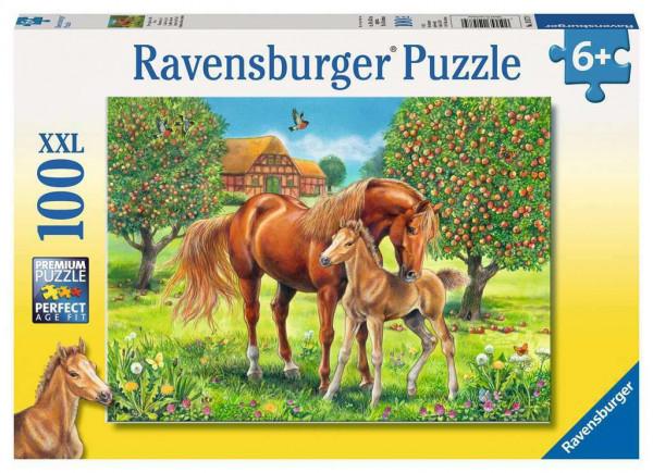 Pferdeglück auf der Wiese, Puzzle, XXL 100 teile