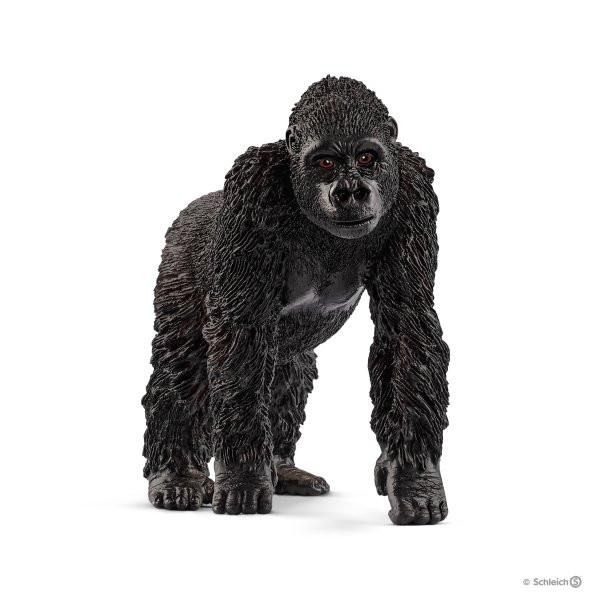 Gorilla Weibchen