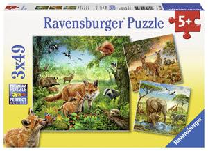 Tiere der Erde, Puzzle 3 x 49 Teile